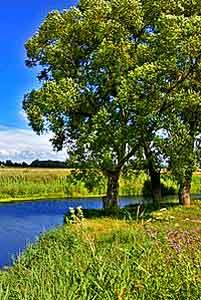 Река Дон в верховьях, у  Епифани, Тульская область. Автор фото Евгений Шелковников