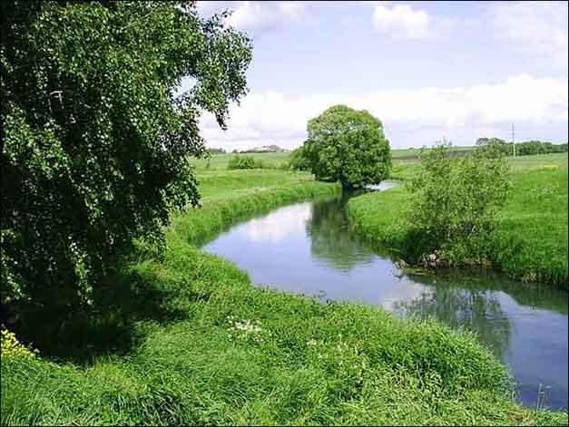 Верховья реки Дон, у села Ренево, Тульская область