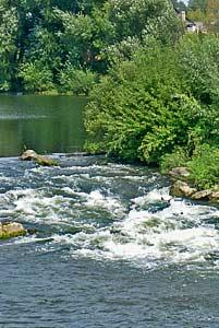 Перекат на река Дон ниже г. Лебедяни. Автор фото Александр Шмелёв