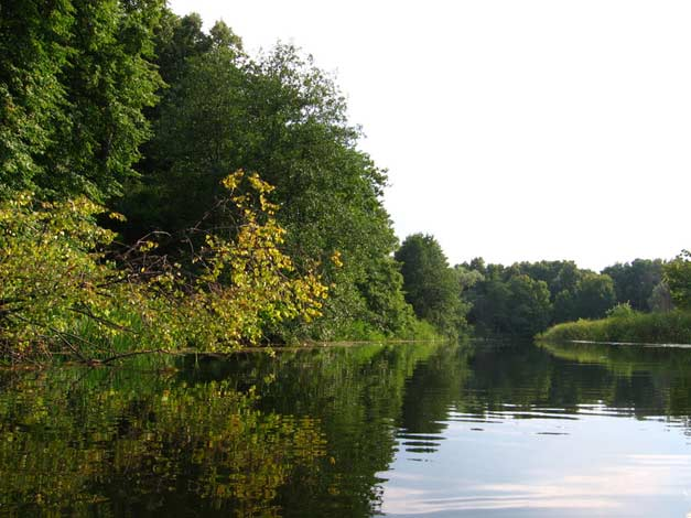 Река битюг тишина
