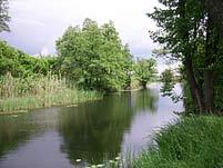 Увеличить фото >>> Река Иловля у села Ольховка, автор фото Иван Кусков