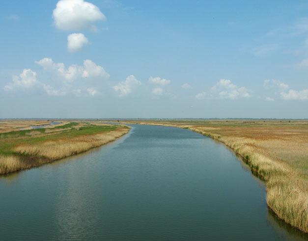 Над рекой - русло реки Западный Маныч