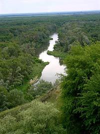 Увеличить>>> фото Река Медведица у Линево, автор фото Сергей Субботин