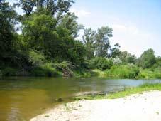 река Медведица, фото 4