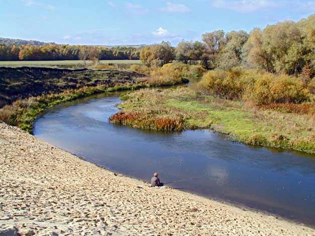 рыбалка на дону павловск воронежской области