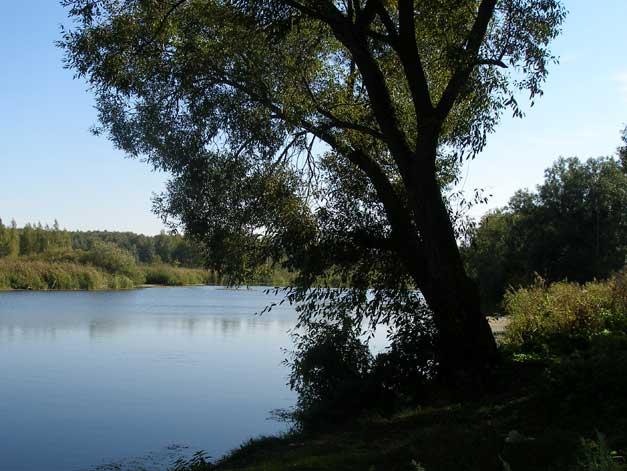 Река Усманка, Липецкая область